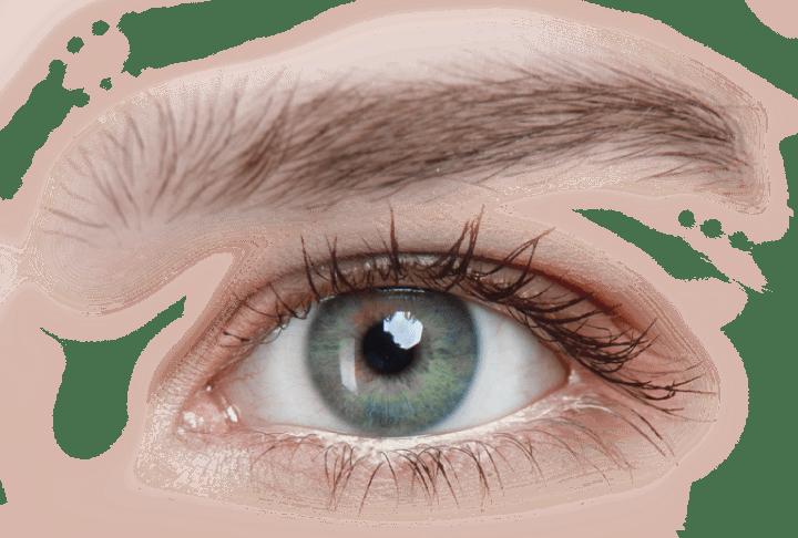 Ojo azul que representa el camino de la mirada de DO belleza bienestar